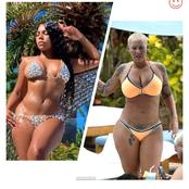 Between Ashanti And Amber Rose, Who Slays Better On Bikini outfit? (Photos)