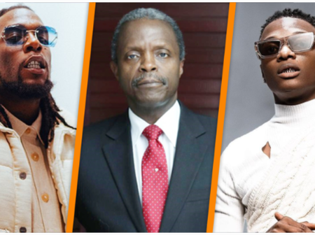 Reactions as FG plans to support stars like Burnaboy and Wizkid with N300million loan