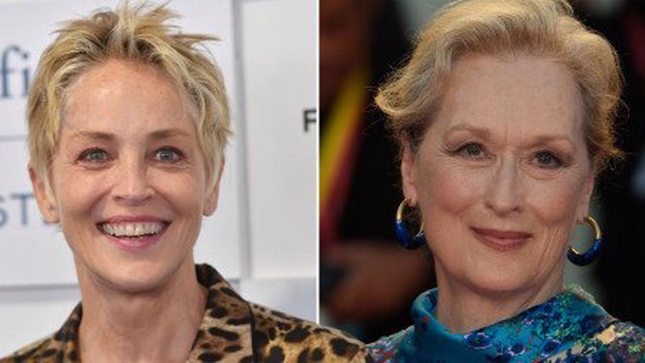 Sharon Stone addresses viral comments about Meryl Streep