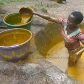 Lady Cries Out After She Saw This Method Of Red Oil Processing!!