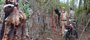 Skeletal Remains Of Missing Lovers Found Hanging In The Forest; Police Suspect Suicide