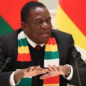 Good News For All Zimbabweans As Mnangagwa Warns Ramaphosa Concerning Illegal Borders Crossing