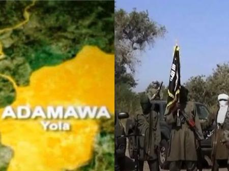 After Boko Haram held 30 people captive in Adamawa, see what they demanded for that got reactions
