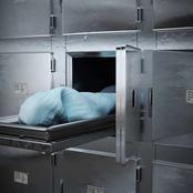 مقتل ثلاث حراس لسرقة «أغنام» وعاطل ينهي حياة شقيقه لشراء «المخدرات» وسرقة «توك توك» تنهي حياة سائقه