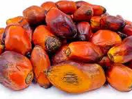 How To Use Palm Fruit To Treat Cancer, Viruses And Waist Pain (Read Details)