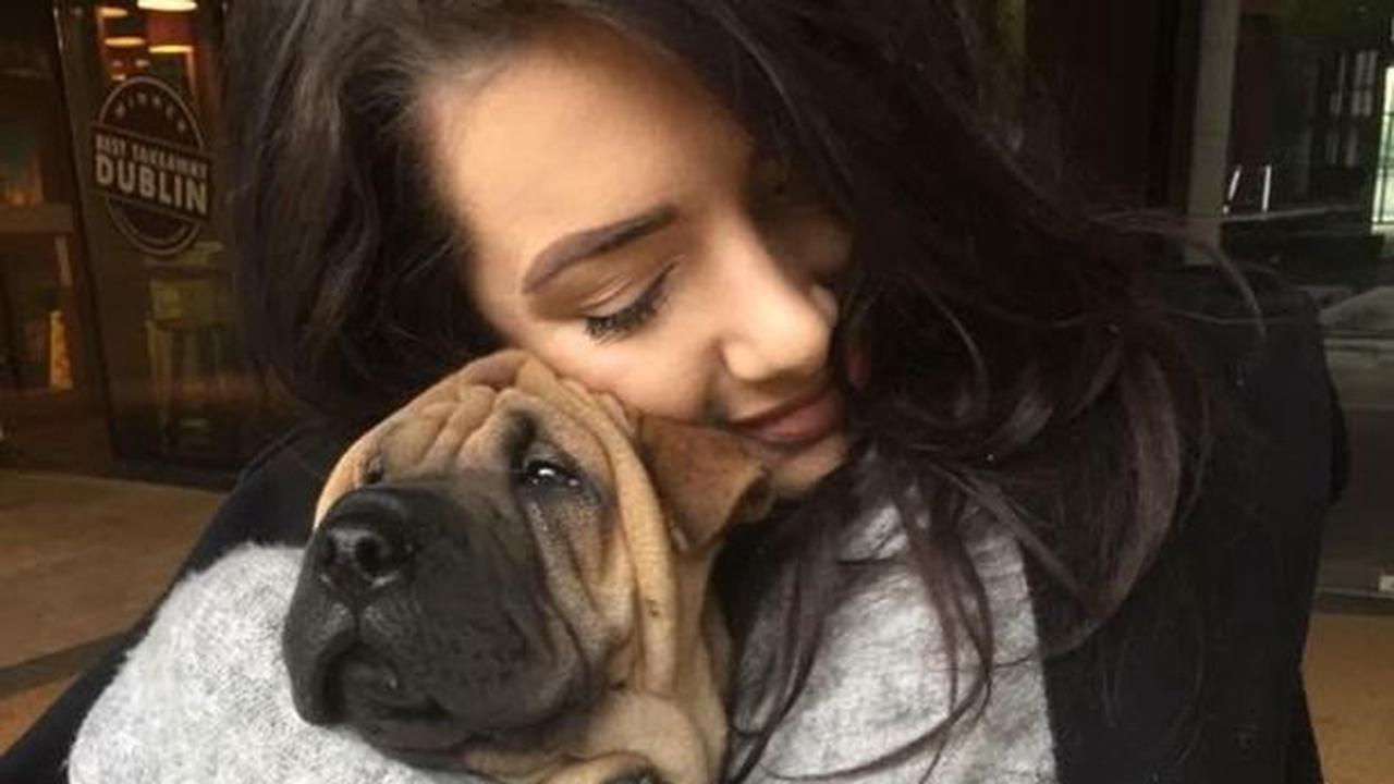 Good Samaritan mortified after dog fostering mishap