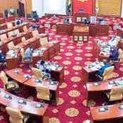 NPP Will Chair All Committees In Parliament. Check Out What Is Happening In Parliament