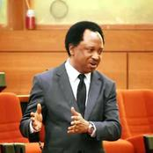 You are needed on the battlefield, not on 'Black Friday' - Shehu Sani criticizes Hisbah in Kano