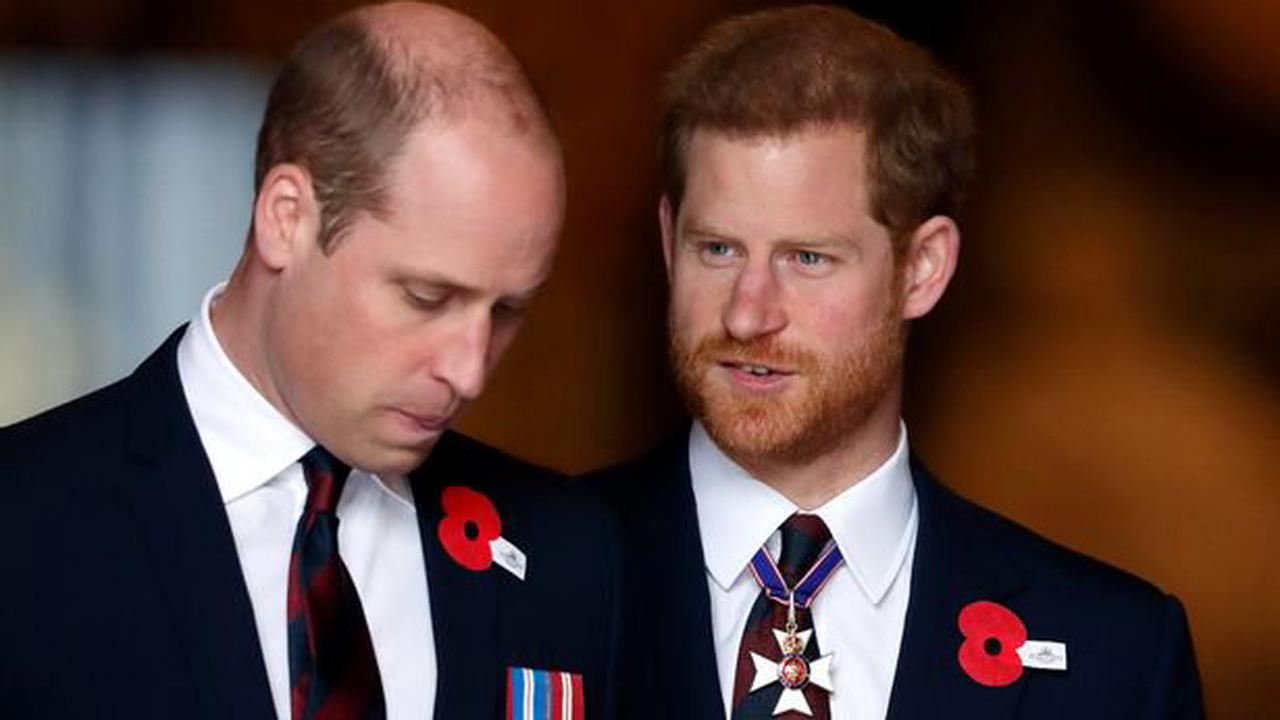 William and Harry 'to give separate speeches at unveiling of Diana's statue'