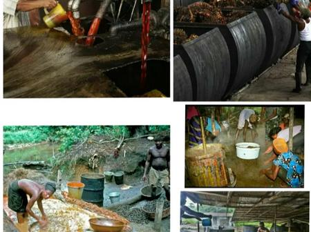 Checkout The Old Way And New Way Of Palm Oil Production In Nigeria (Photos)