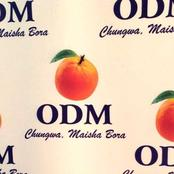 ODM Extends Deadline Day For Presidential Application To This Date