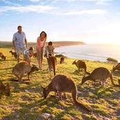 أستراليا غير موجودة وكل سكانها ممثلون.. نشطاء الأرض المسطحة وأفكارهم العجيبة