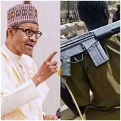 Insecurity: Anybody Caught With AK-47 in Nigeria Should Be Shot - Presidency Orders