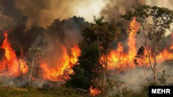 Wildfire in southern Iran burning precious woodlands and wildlife. May 29, 2020