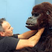 George of the Jungle:behind the scenes pictures of the movie.,