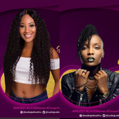 Here is how DJ Switch and Erica were celebrated on International Women's day