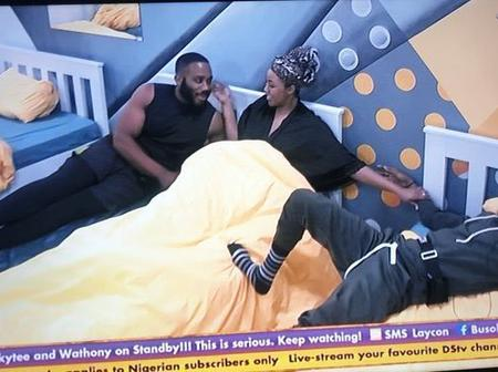 BBN: ''You would have to choose between Kidd and I'' Laycon tells Erica.