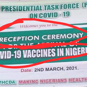 What Presidential Task Force Is Celebrating Today That Got Many Nigerians Laughing
