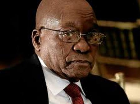 Egoism. Rise and fall of JZ