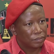 The Real Facts About Julius Malema And His Birthday Celebration