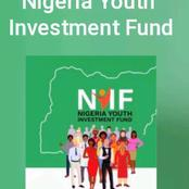 FG Commences Application For N75 Billion Youth Investment Fund