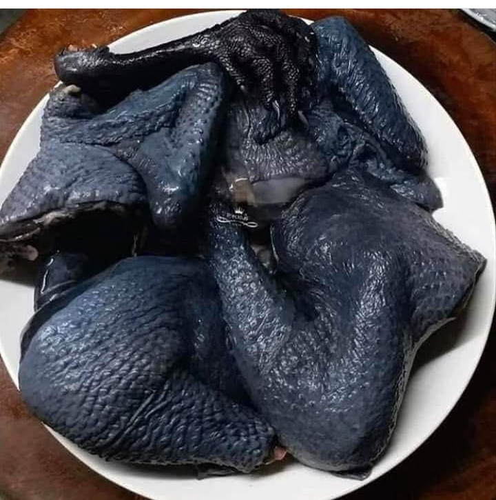 59ea4730bc13d0e961d836827e4c1625?quality=uhq&resize=720 - Meet the Ayam Cemani Chicken, AKA the 'Lamborghini of Poultry' - Will You Ever Taste It? (Photos)