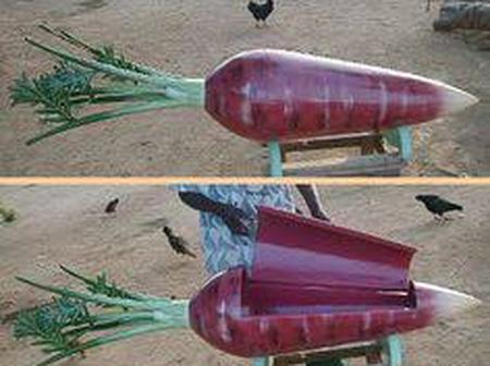 Will You Allow These Coffins To Be Used To Bury Your Mother or Father? If not why?