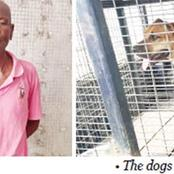 Man Unleashes Dogs On Policemen That Came To Arrest Him In Lagos State.
