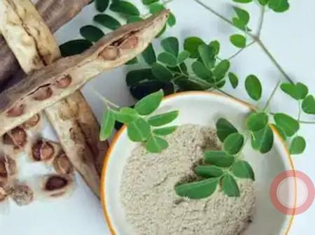 5 Herbal plants to take if you dont want to fall prey to diseases and sicknesses