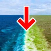 Why Pacific ocean water doesn't mix with Atlantic water
