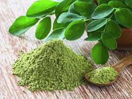 Five (5) Health Benefits of moringa leaves as you grow old