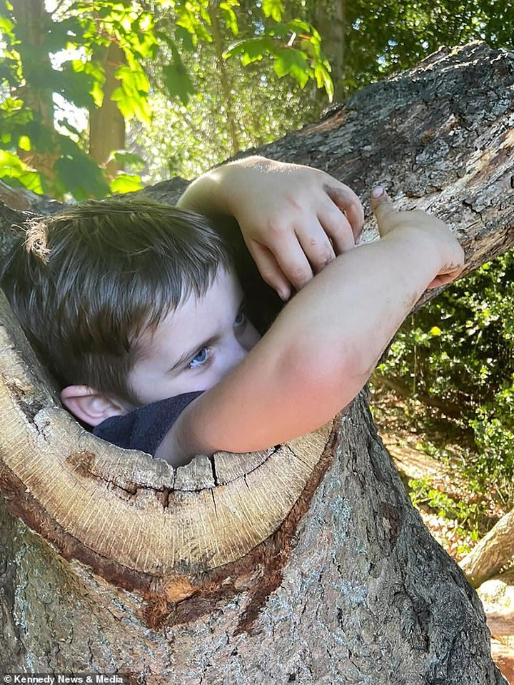 Finley Ibrahim, four, was exploring the woods in Eastham Country Park, Merseyside, with two of his brothers when he slithered into a hole in a tree trunk and couldn't get back out