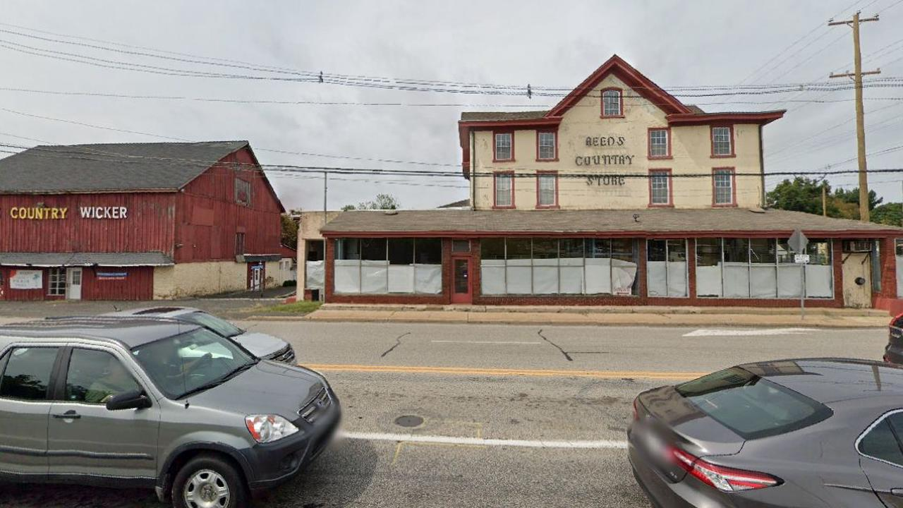 Reed's Country Store and Wicker Barn property listed for sale