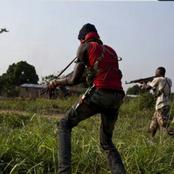 Unknown Armed Group Attacked Farmers In Borno State, Nigeria