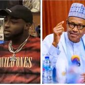 See What Davido Said About Buhari That May Put Him In Serious Trouble