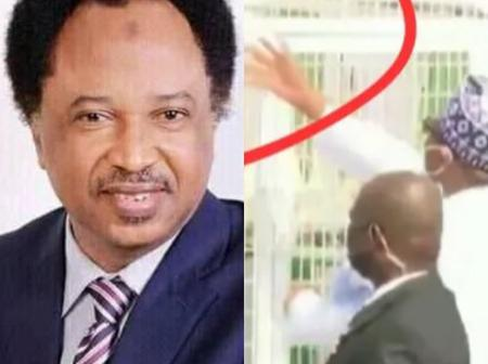 See What Shehu Sani's Said After Pigeons Refused To Fly Out At Armed Forces Remembrance Day