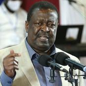 Political Implications of ANC and Ford-Kenya Win in Matungu and Kabuchai