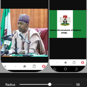 Zulum Requests that FG Recruit Hired soldiers, Look for Unfamiliar Help To End Insurrection.