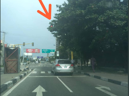 Big Overgrown Tree Obstructs View Of Traffic Light In Ikoyi, Lagos State