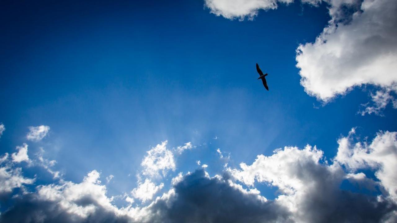 Météo : le ciel sera voilé ce dimanche en Corse