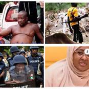 Today's Headlines: Suspected Fulani herdsmen burn farmlands in Osun, Police raid gay party