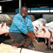 Leitmotiv : la sud-africaine Anna Phosa a commencé l'élevage avec 4 porcs, aujourd'hui elle en possède 5000