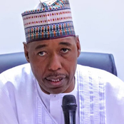 Opinion: The Situation with Zulum and the Boko Haram Militants