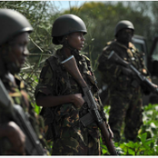 Opinion: This is Why KDF and Other Militaries Never Reveal Exact Number of Casualties