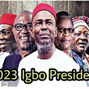Opinion: 5 Igbo men that can contest for the coming presidential election.