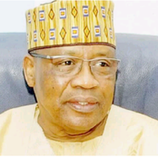 I was amazed when I discovered that IBB is not Hausa or a Fulani man! See his tribe