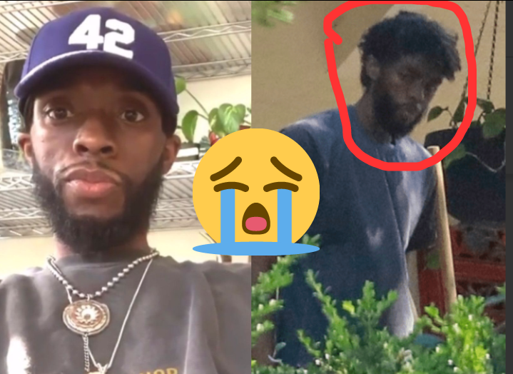 5e697861ee88deb41770399c7498ad56?quality=uhq&resize=720 - So sad: Before and After Photos of Chadwick that shows how sick he became before dying (Photos)