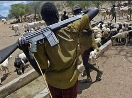 Black Tuesday In Ebonyi State As Fulani Herdsmen Kill Over 25 Persons