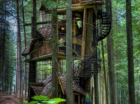 Top 13 most amazing tree houses we've ever seen