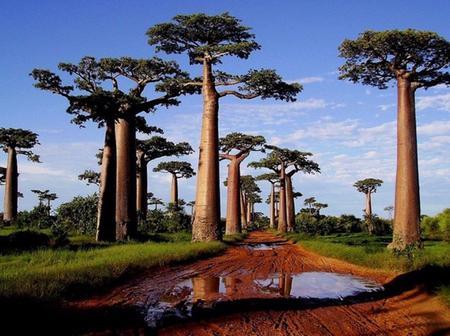 Voici les 8 plus beaux paysages d'Afrique